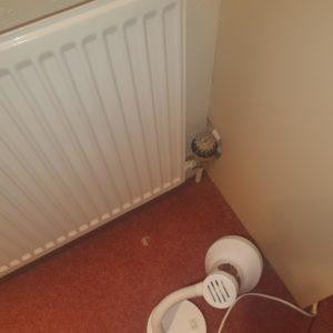 home plumbing fixed